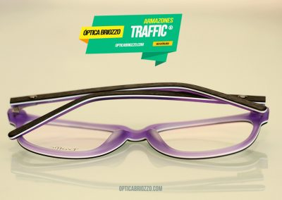 traffic17_01