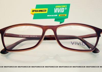 vivid_488