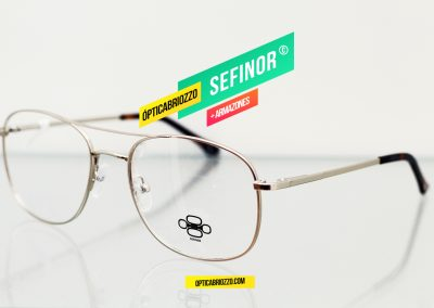 SEFINOR_010