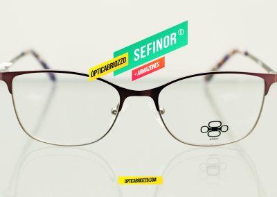 SEFINOR_013