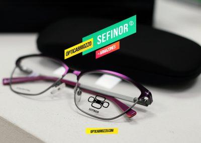 SEFINOR_017