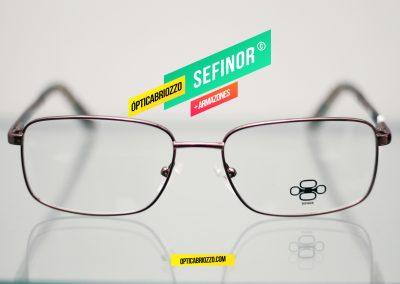 SEFINOR_022