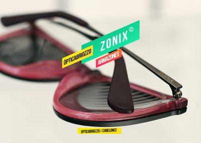ZONIX_10