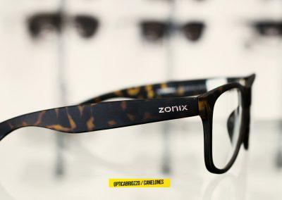 ZONIX_13
