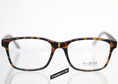 BLOOM_003